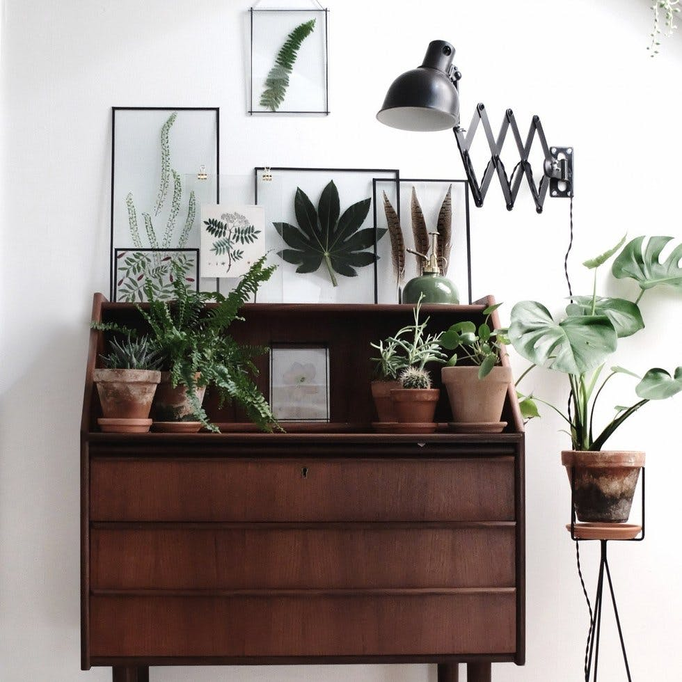 20 on trend ways to display plants and flowers in your. Black Bedroom Furniture Sets. Home Design Ideas