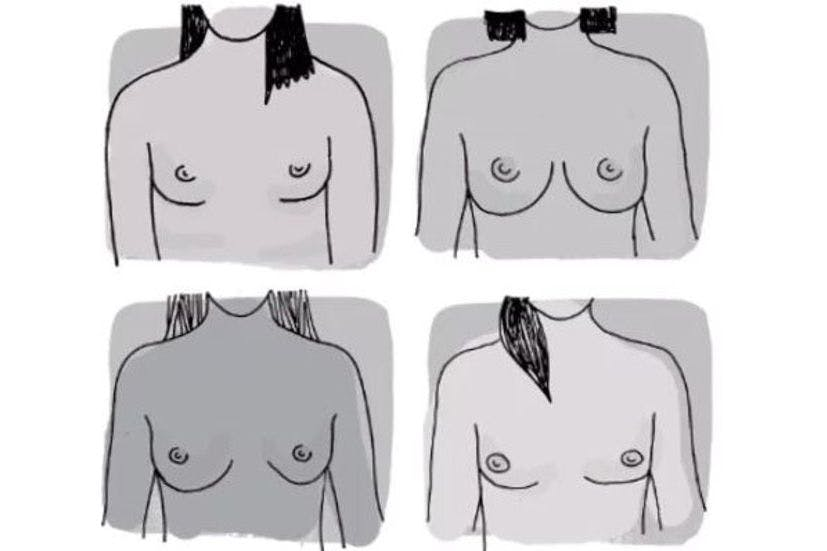 "Puberty guide causes fury with ""extremely problematic"" explanation of  breasts"