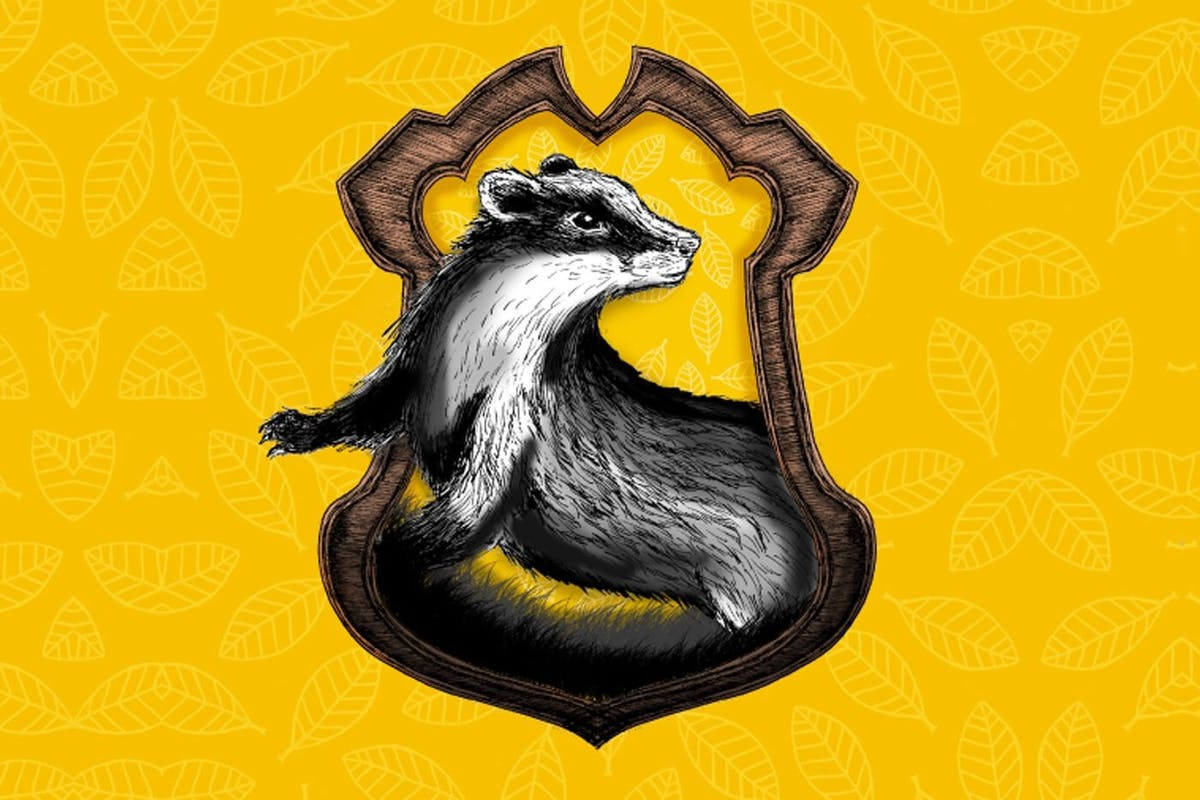 ff05f1e0 Why Hufflepuff is the best Hogwarts house in Harry Potter