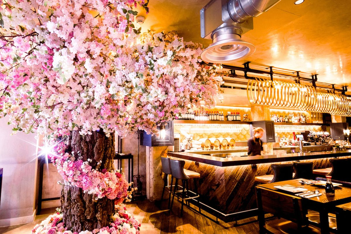 Best restaurants in London for the plant obsessed